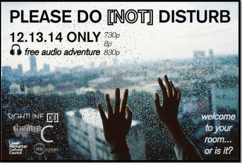 PLEASE DO NOT DISTURB (2015)