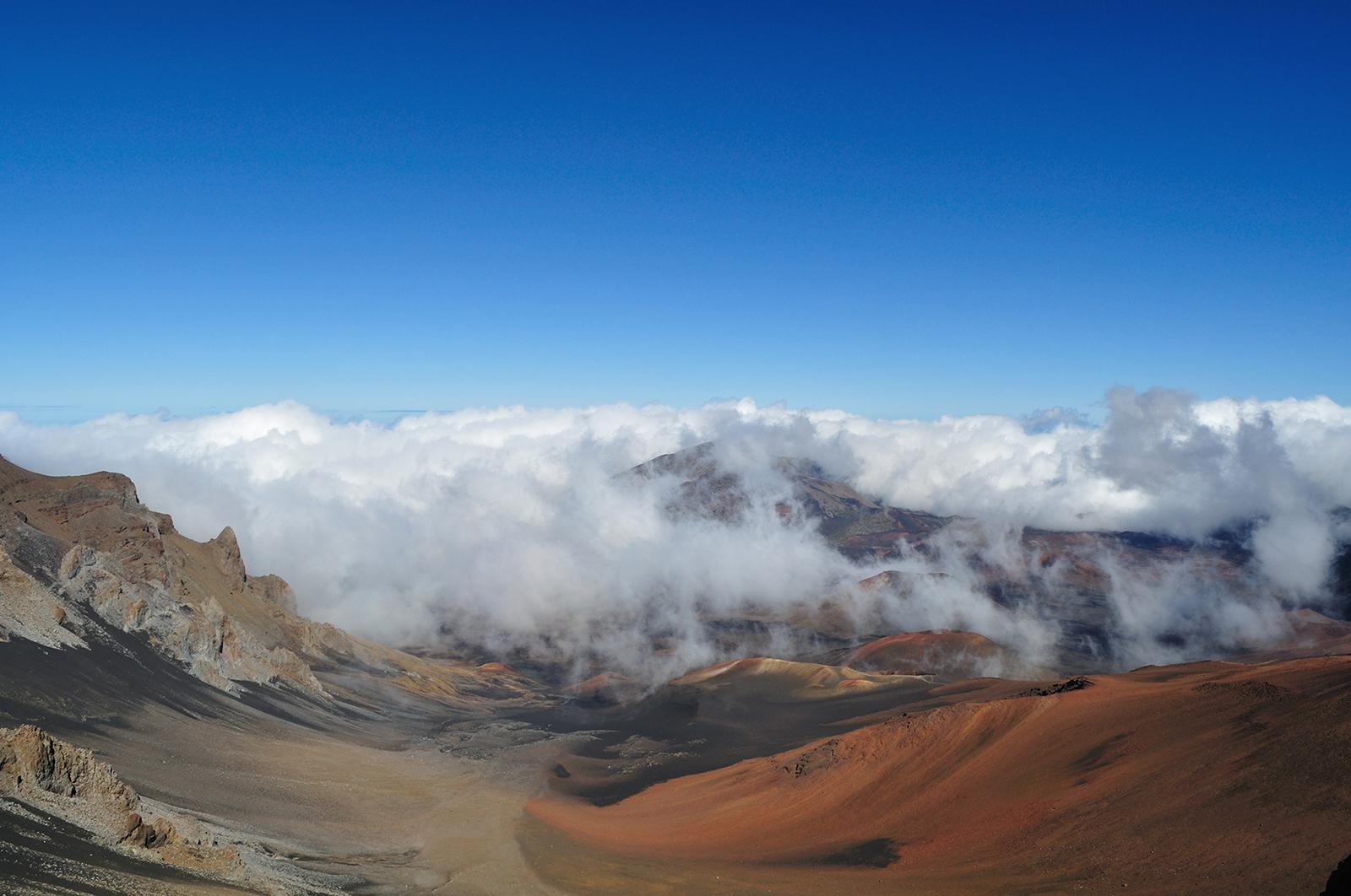 "Summit area of Haleakala, Maui, Hawaii. This habitat is home to   Thyrocopa apatela  , the flightless ""grasshopper moth."""