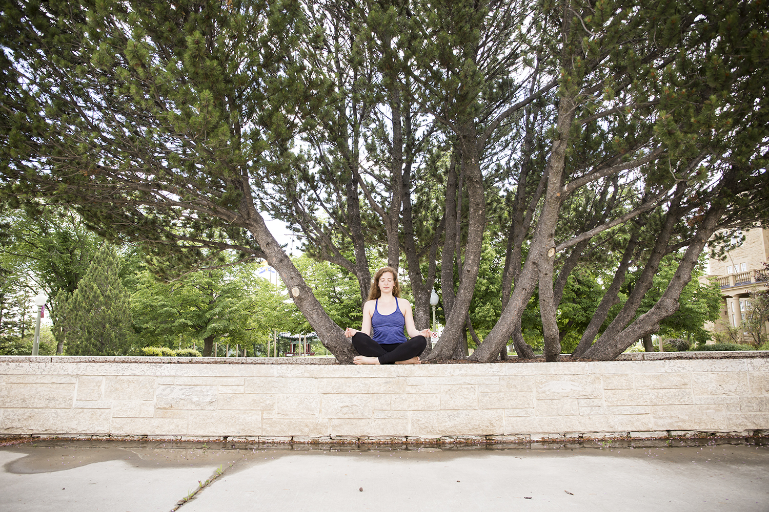 Photos in this blog courtesy of Caitlin Varrin of Yogalife Studios, featuring Dayna Der