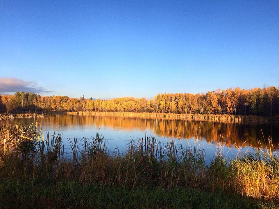 maggie-hill-lake.jpg