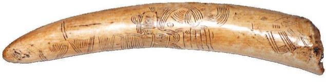 Pavlov Map (Czech Republic), 24000-25000 AC Archaeological museum, Dolni Vestonice