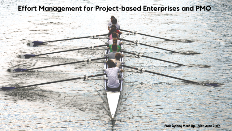 Effort Management for Project-based Enterprises and PMO
