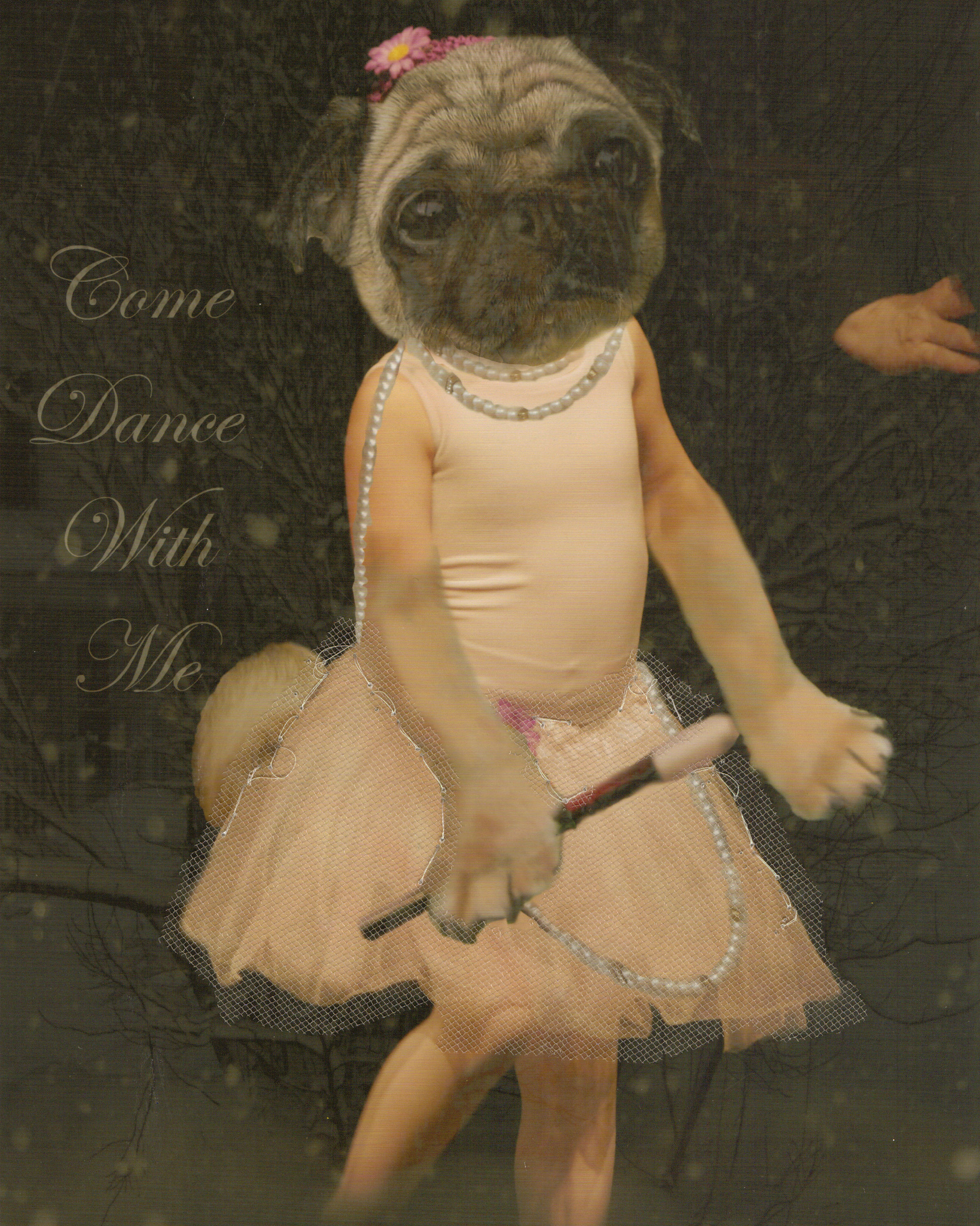 24 Collage Come Dance with Me copy.jpg