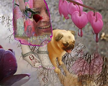 02 Collage Reflective Stroll.jpg