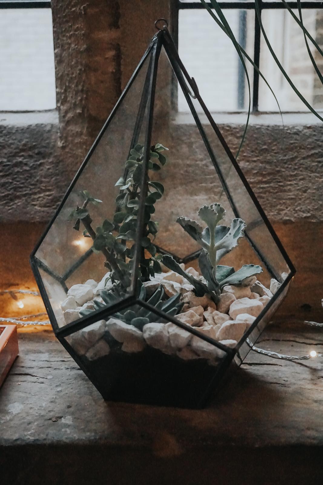 Write-Yourself-Home-workshop-sas-Petherick-minas-planet-jasmina-haskovic4.jpg