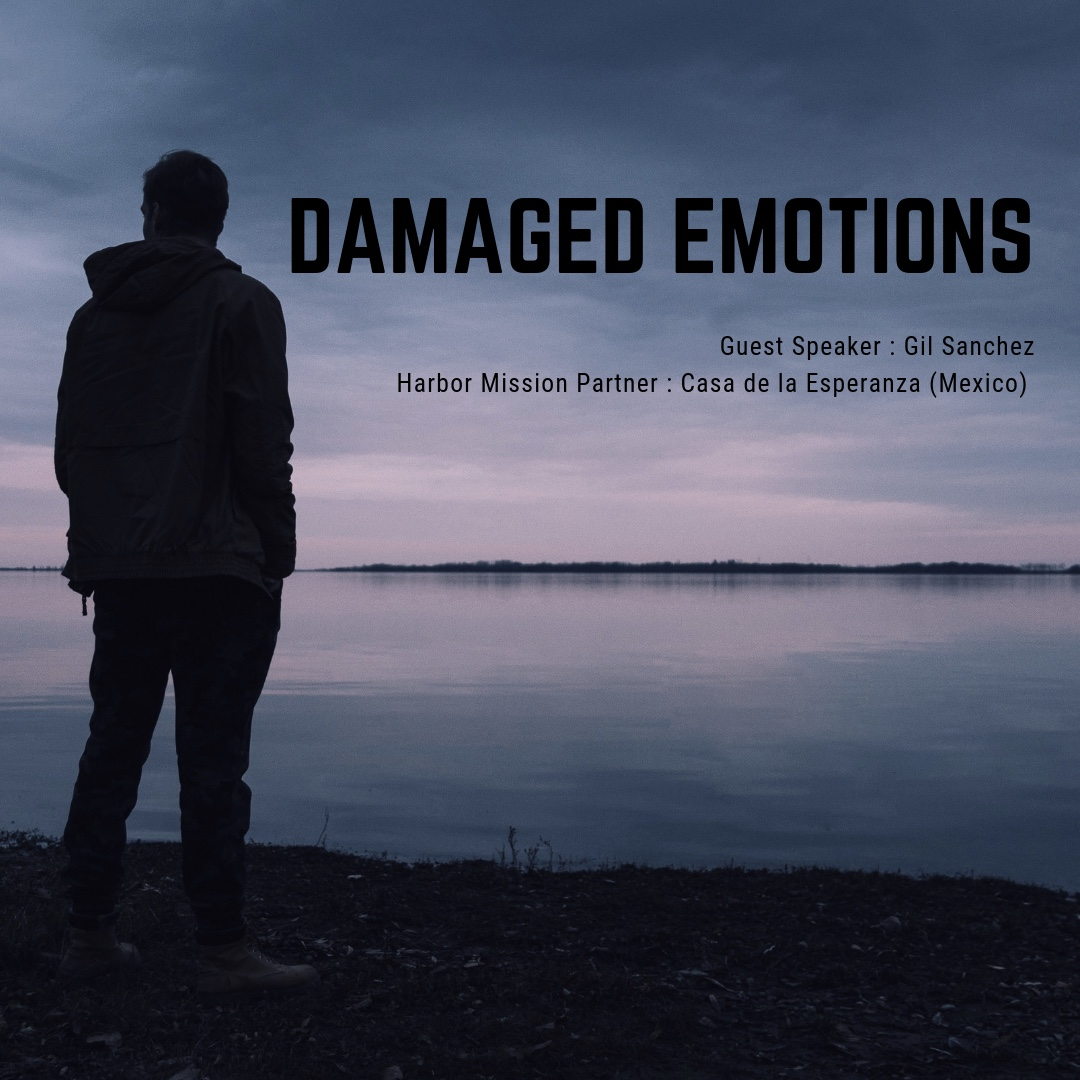 DAMAGED EMOTIONS (1).jpg