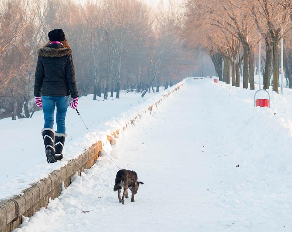 EagleCreek.com:  4 Ways To Stay Fit On Winter Vacation    Print your plane ticket, pack your travel wallet,throw your running shoes in your  c arry-on, and get ready to take winter vacation fitness by storm with these four tips.