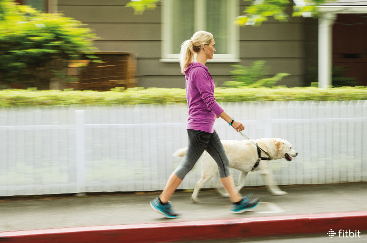 Fitbit.com:   A Dog-Walking Workout That Will Get You and Fido Fit  Turn your dog walking duties into a full-body workout.