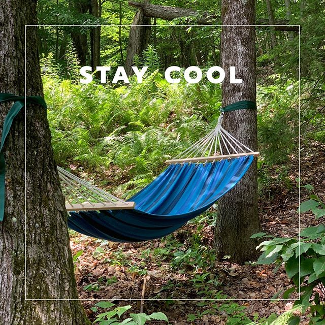 There are many ways to beat the heat, this is ours today... #thenestchalet #heatwave #vermont #vermontsummer #vacationgoals #beattheheat #staycool #igervermont #summerinvermont #cabin #cabininthewoods #wilderness #lushforest #hammock #hammockdreams #hammocklife #shade #airbnbhost #airbnbvermont
