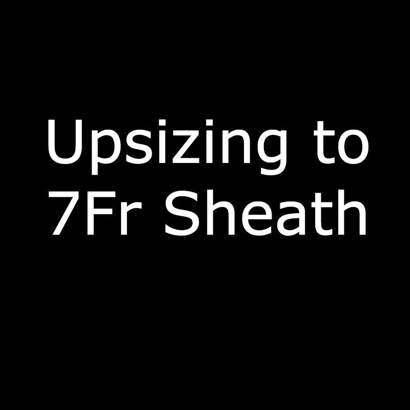 7Fr Sheath.jpg