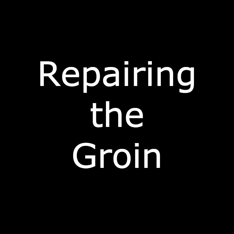 Repairing Groin.jpg