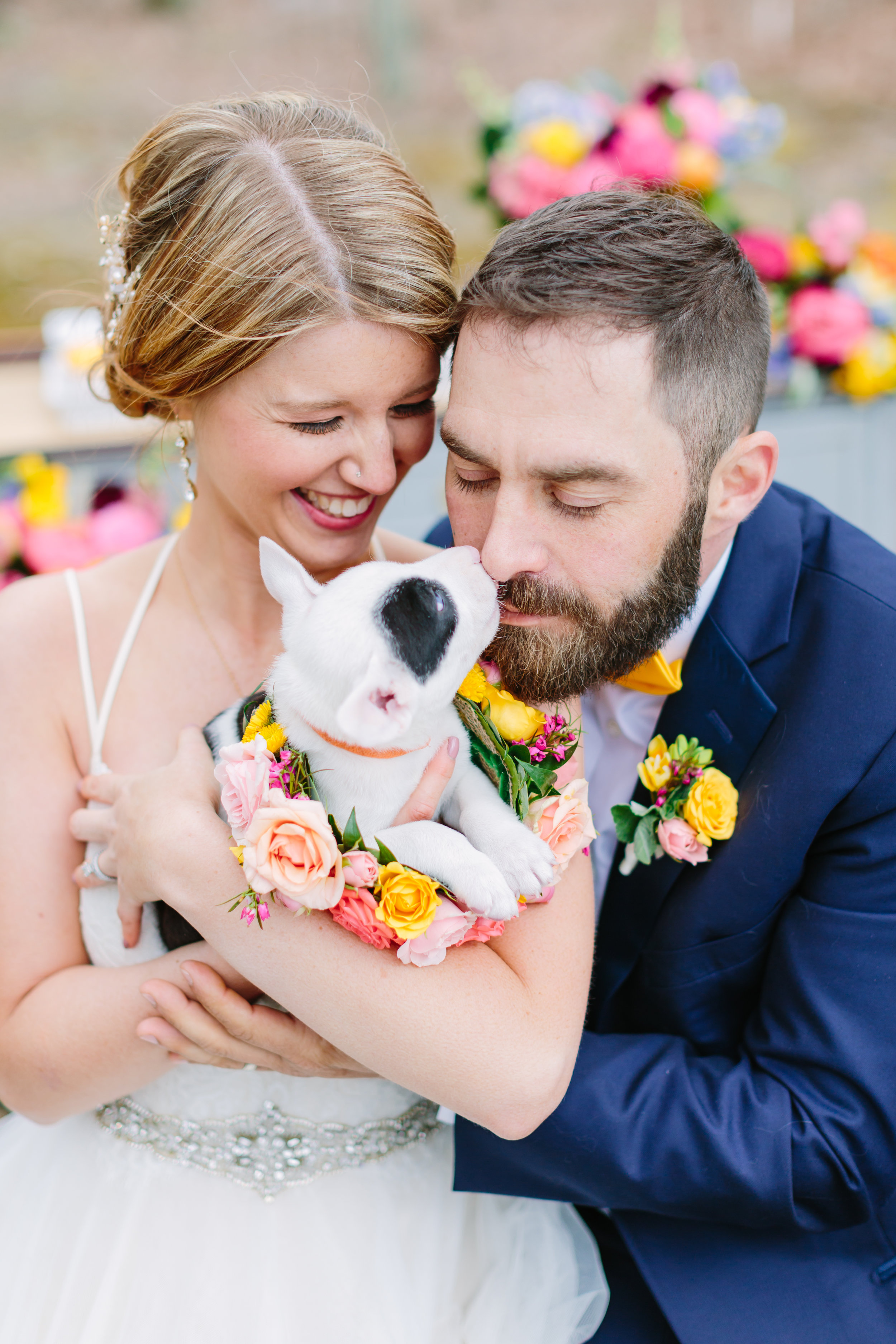 bride_and_groom_with_puppy.jpg