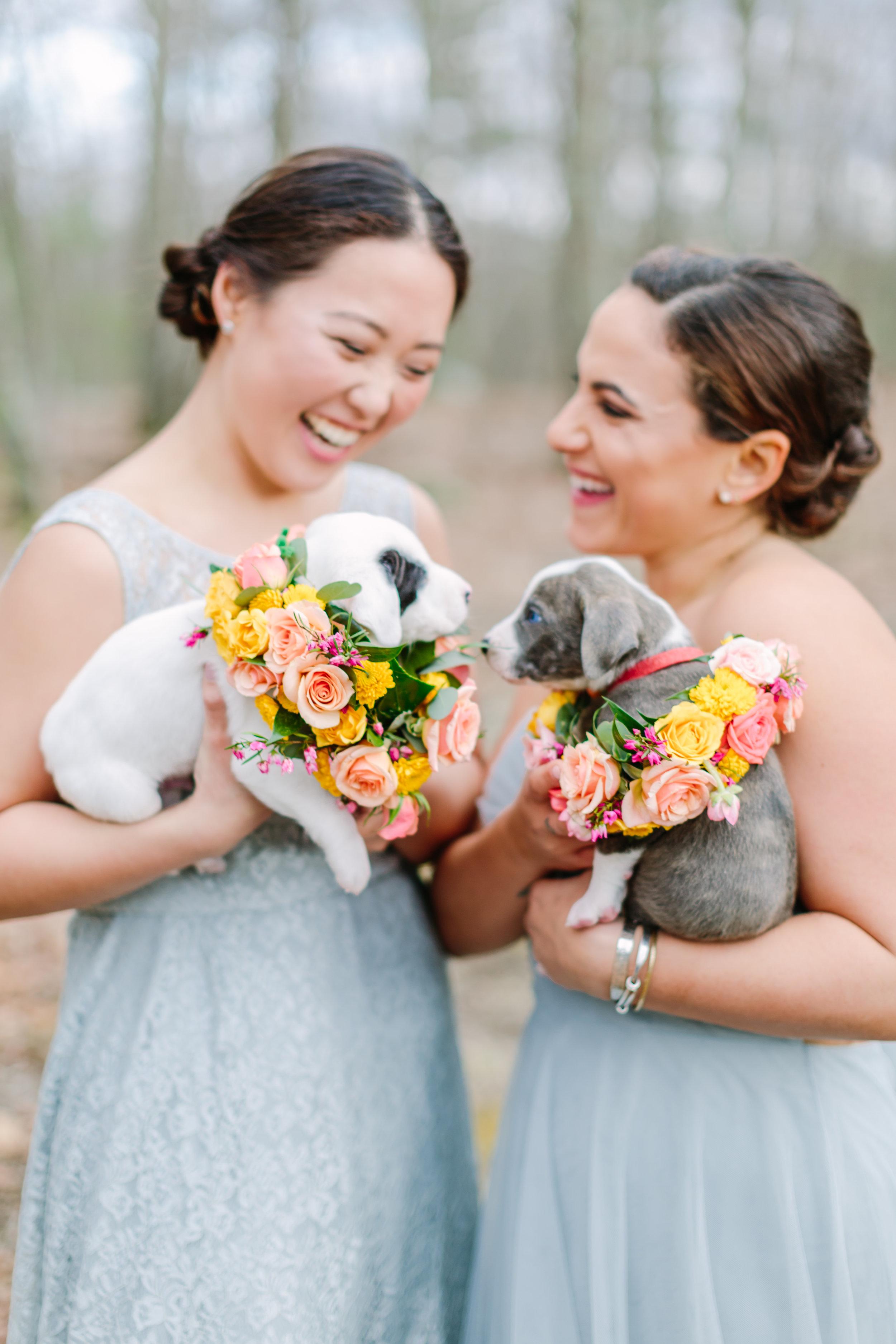 jenny_yoo_bridesmaids_dresses.jpg