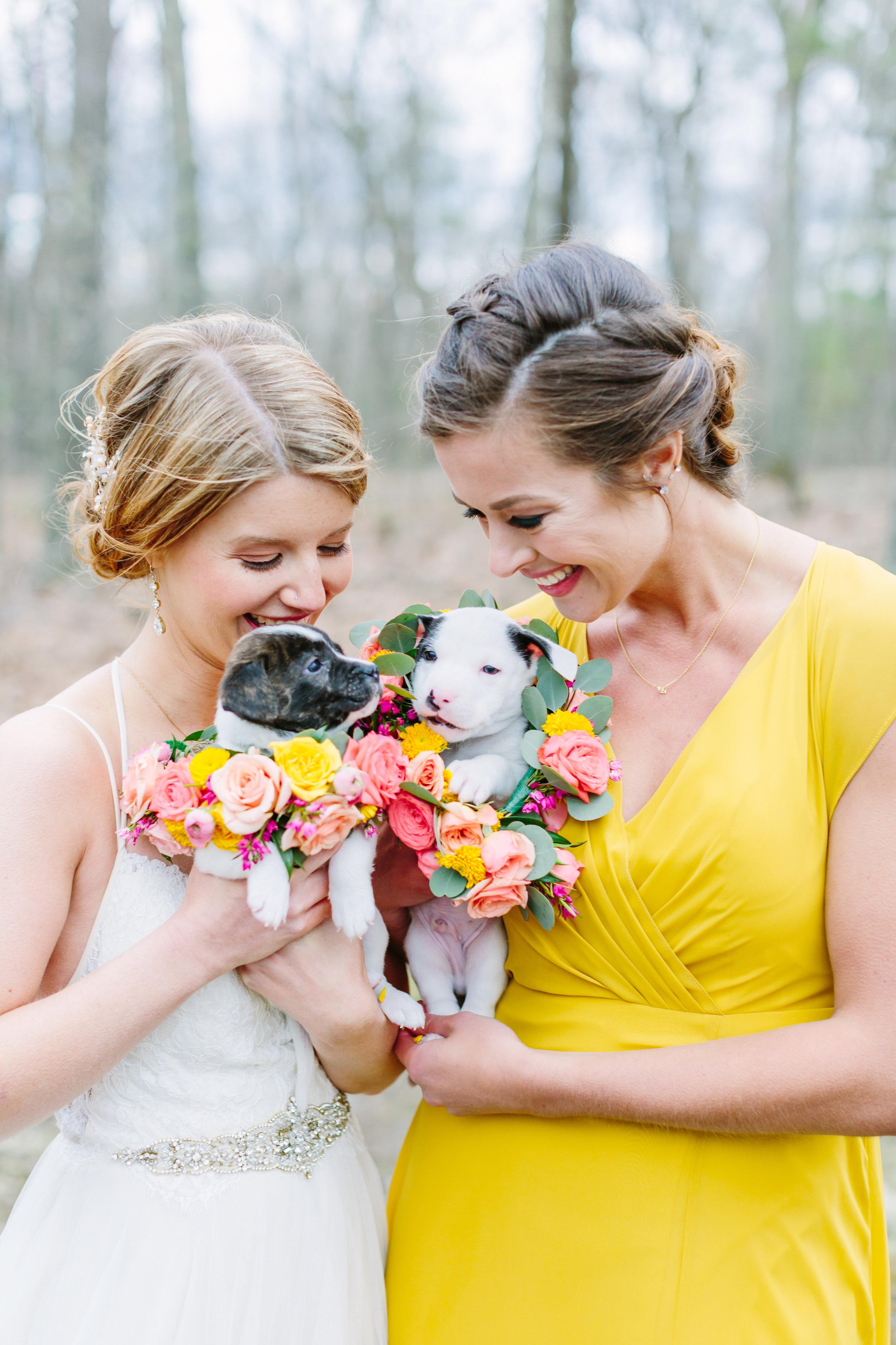 bride_and_bridesmaid_with_puppies.jpg