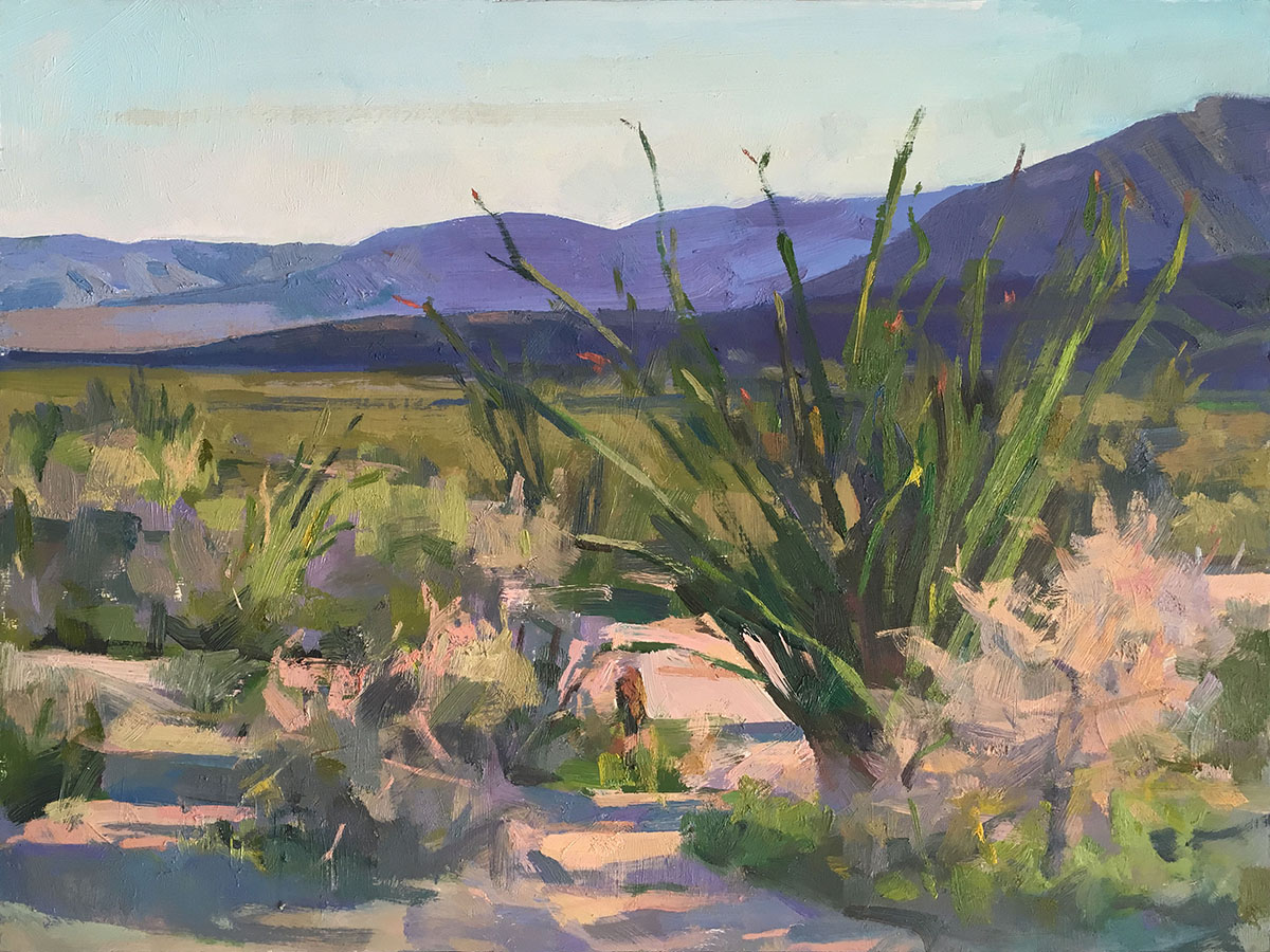 Coyote Canyon, Anza-Borrego