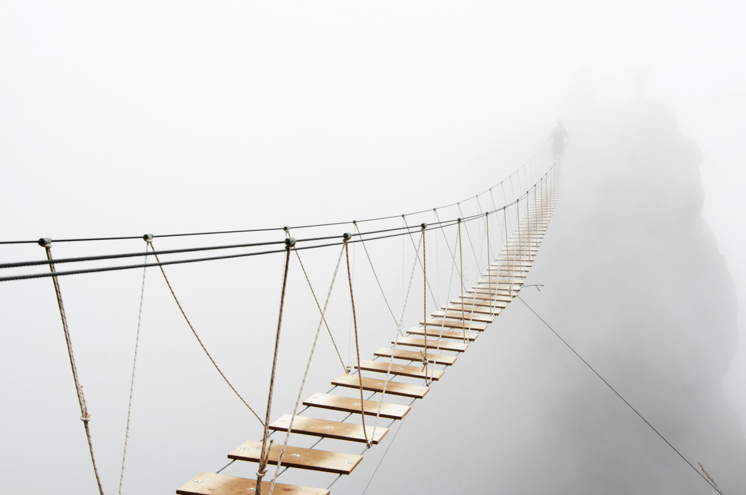 shutterstock_333013640_hanging bridge.jpg