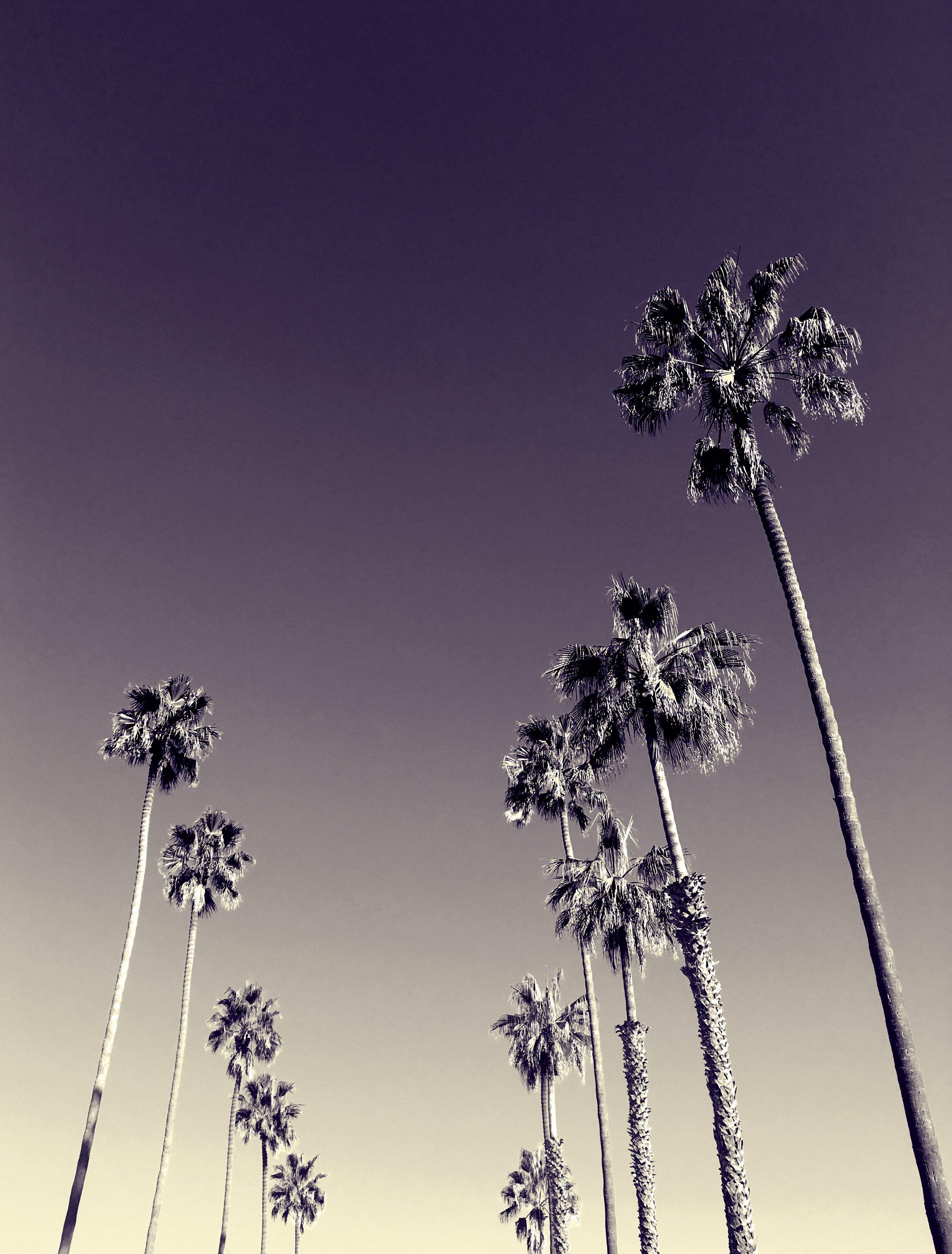 From where I run in La Jolla