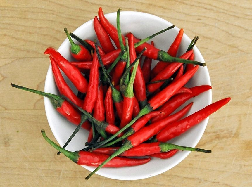 Bird's Eye Chili, otherwise known as Thai Red Chili