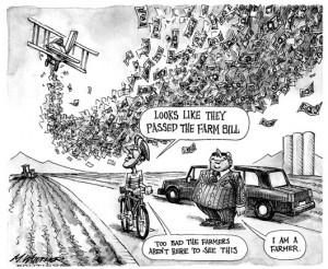 Subsidies-300x246.jpg