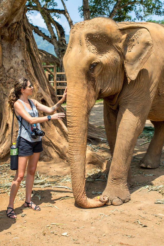 elephant stress reliever.jpg