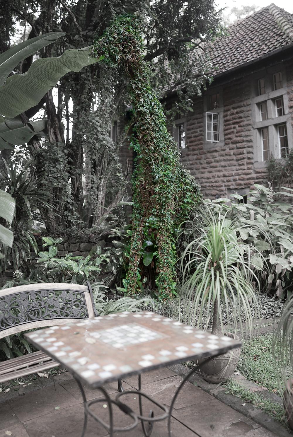Gardengiraffe.jpg