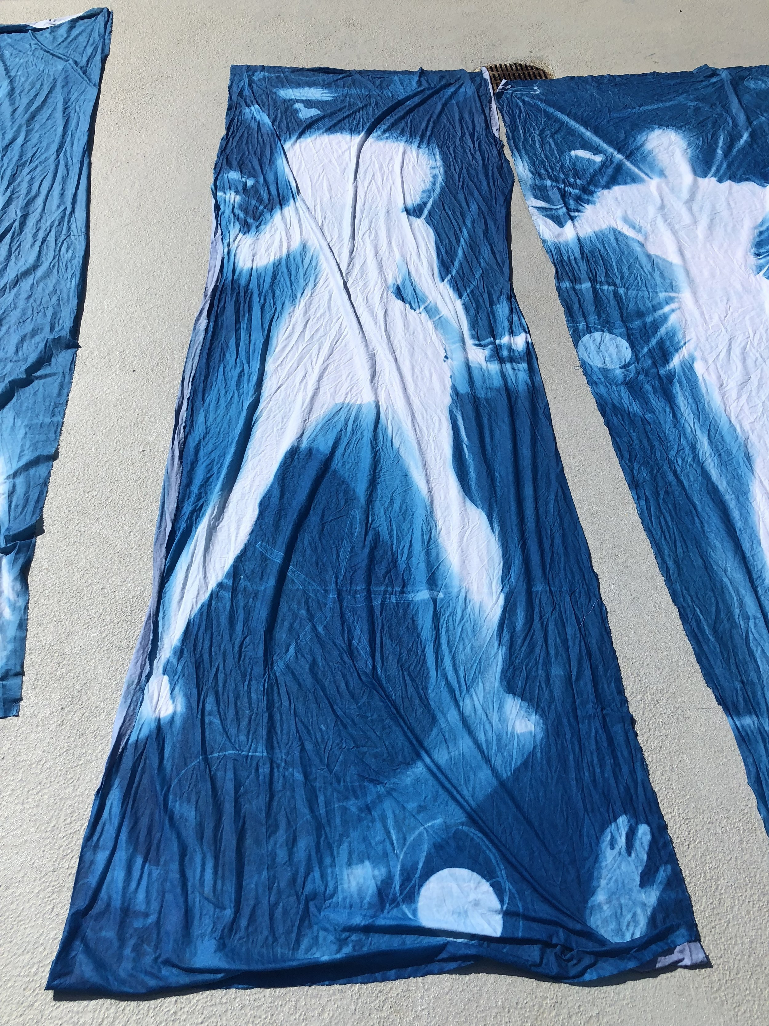 cyanotype artist image workshop texas via hollydgray.com