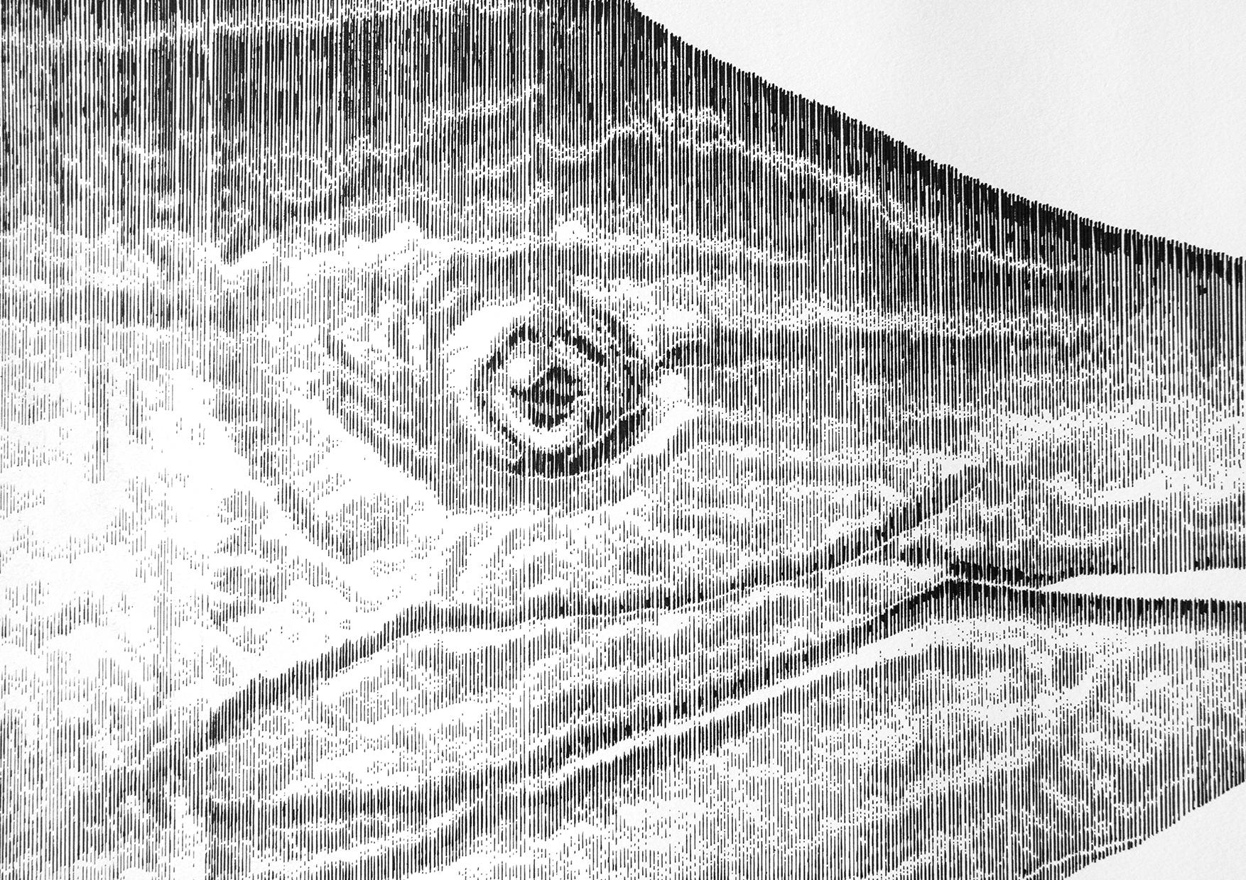 marlin 2.jpg
