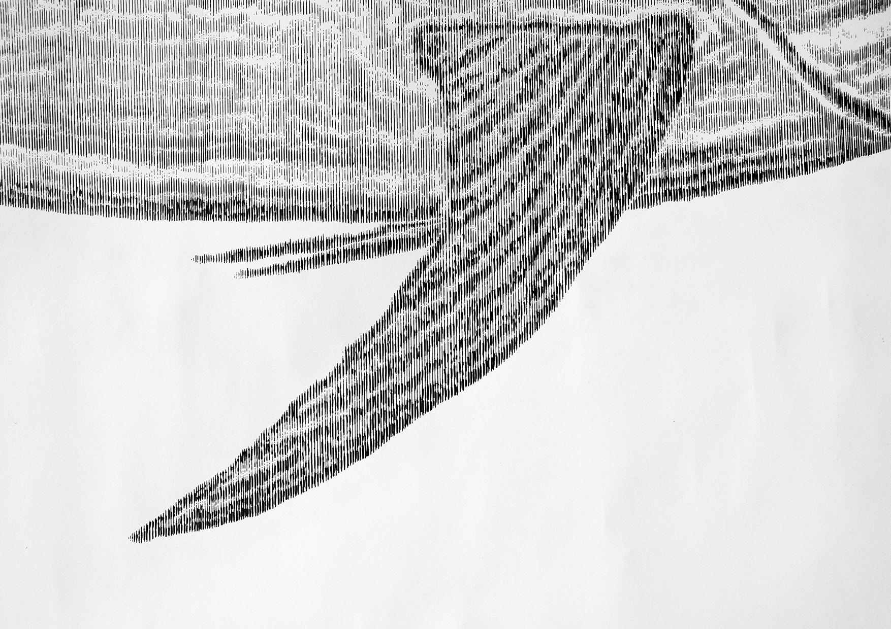 marlin 7.jpg