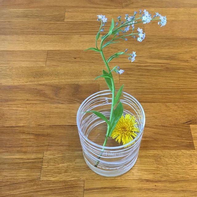 Found this on the kitchen bench this morning, thanks kids! 😊Helen #bymunch #glassware #thescream #norskdesign #edvardmunch #markblomster #wildflowers #løvetann
