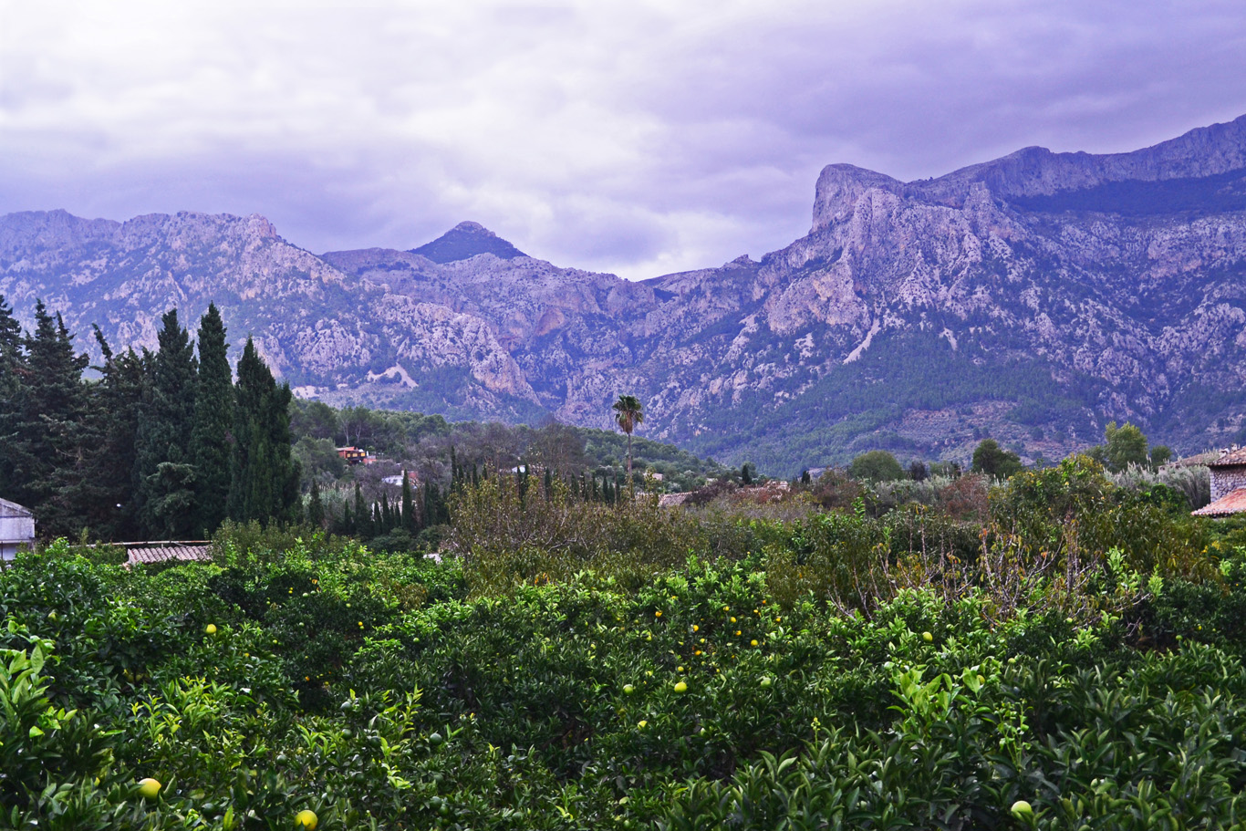 Mountains near Soller