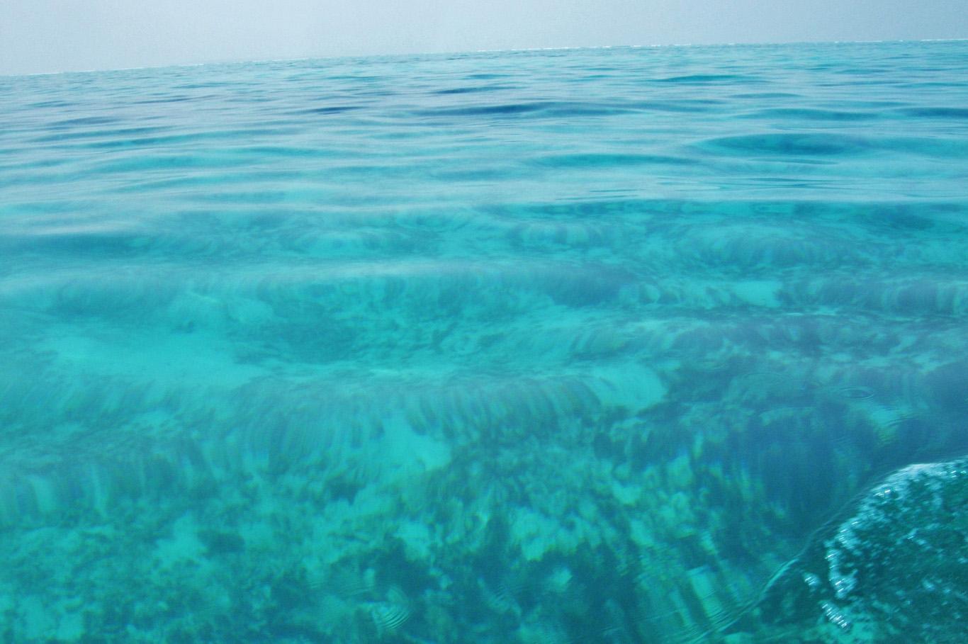 Crystal clear waters in Lakshadweep Islands