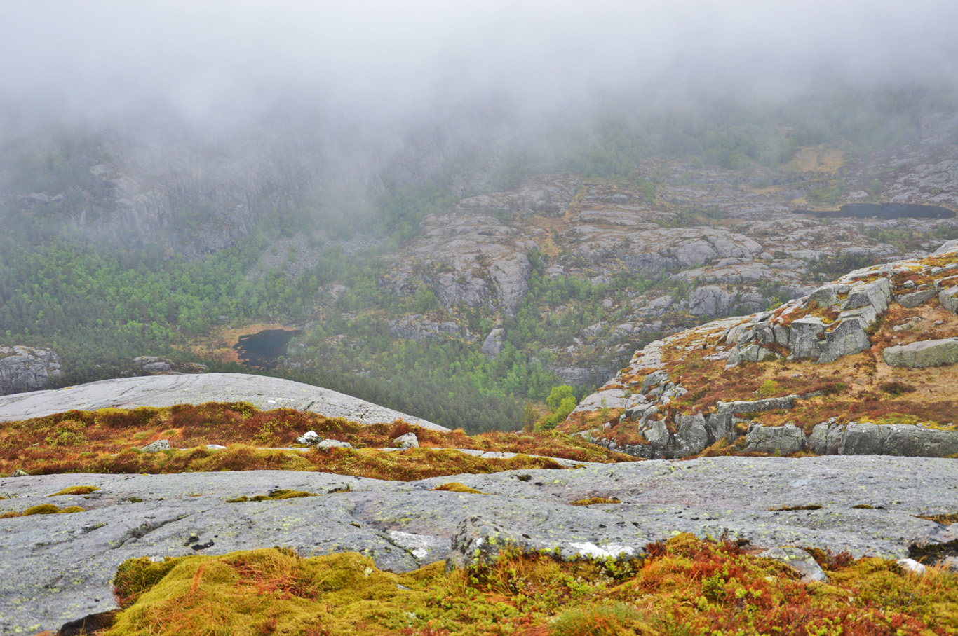 Typical Norwegian landscapes
