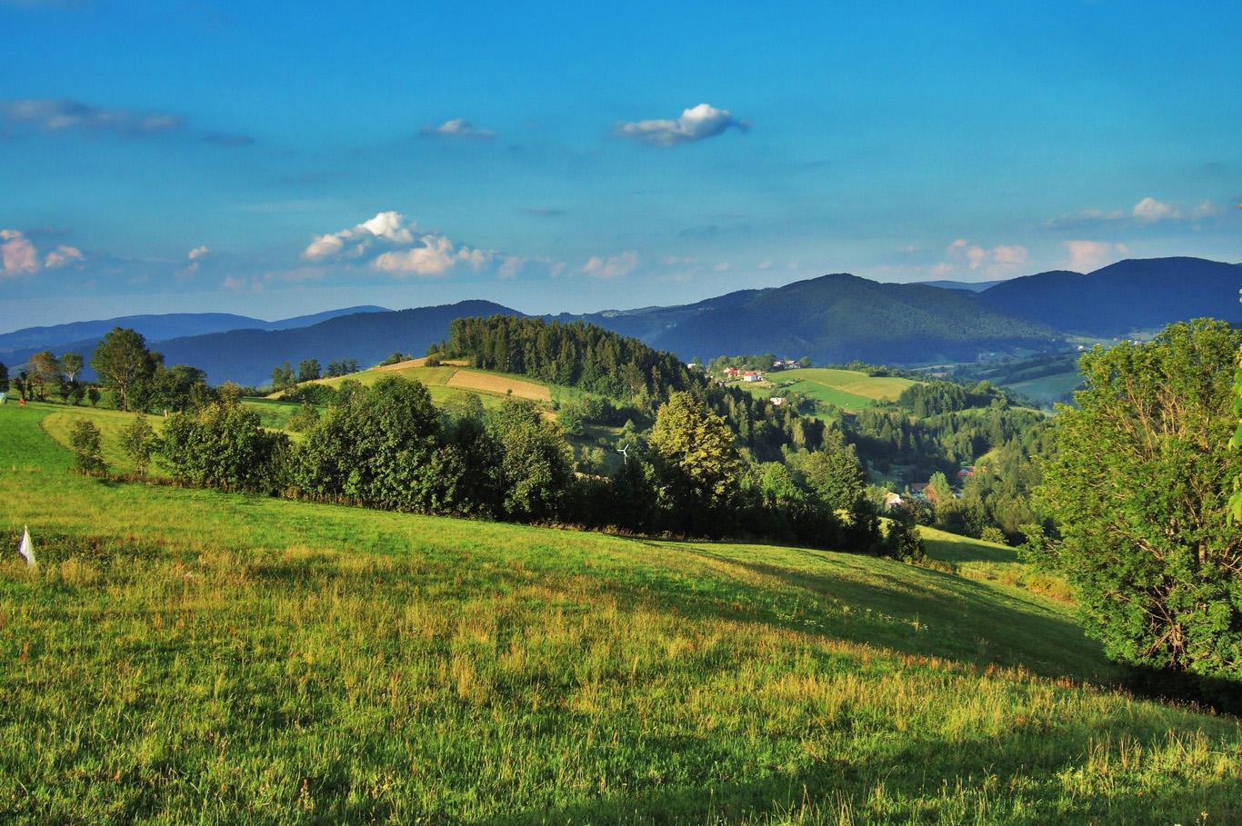 Typical scenery of Beskid Sadecki