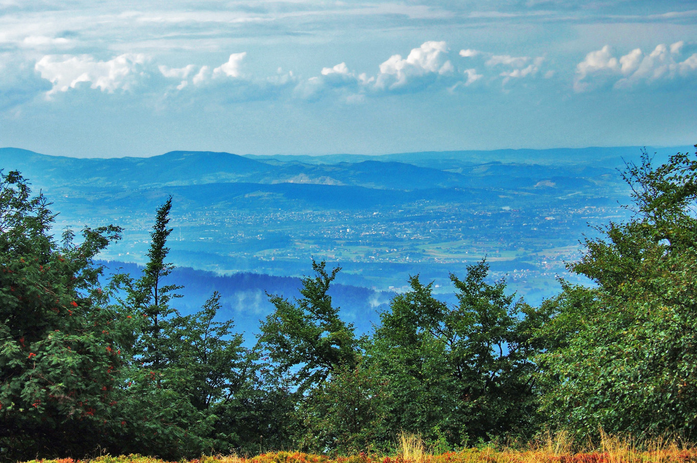Nowy Sacz - view from the trail