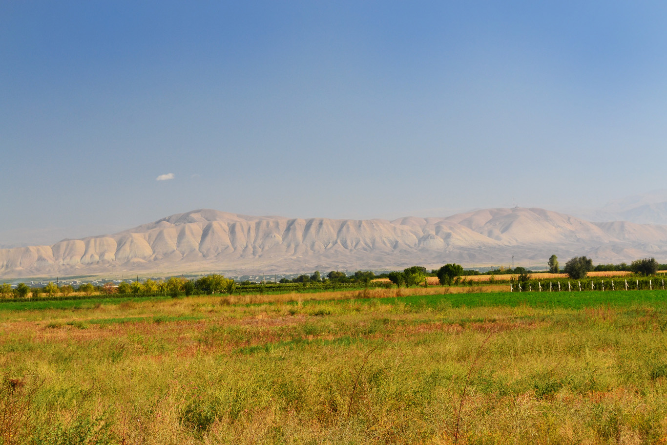 Contrast - dry mountains and green pastures