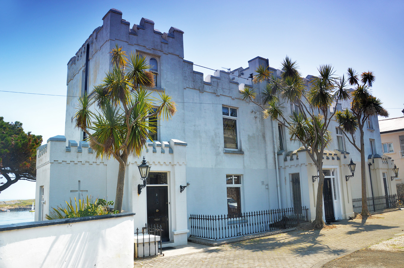 Castle-house and cabbage palm trees (cordyline) in Dalkey