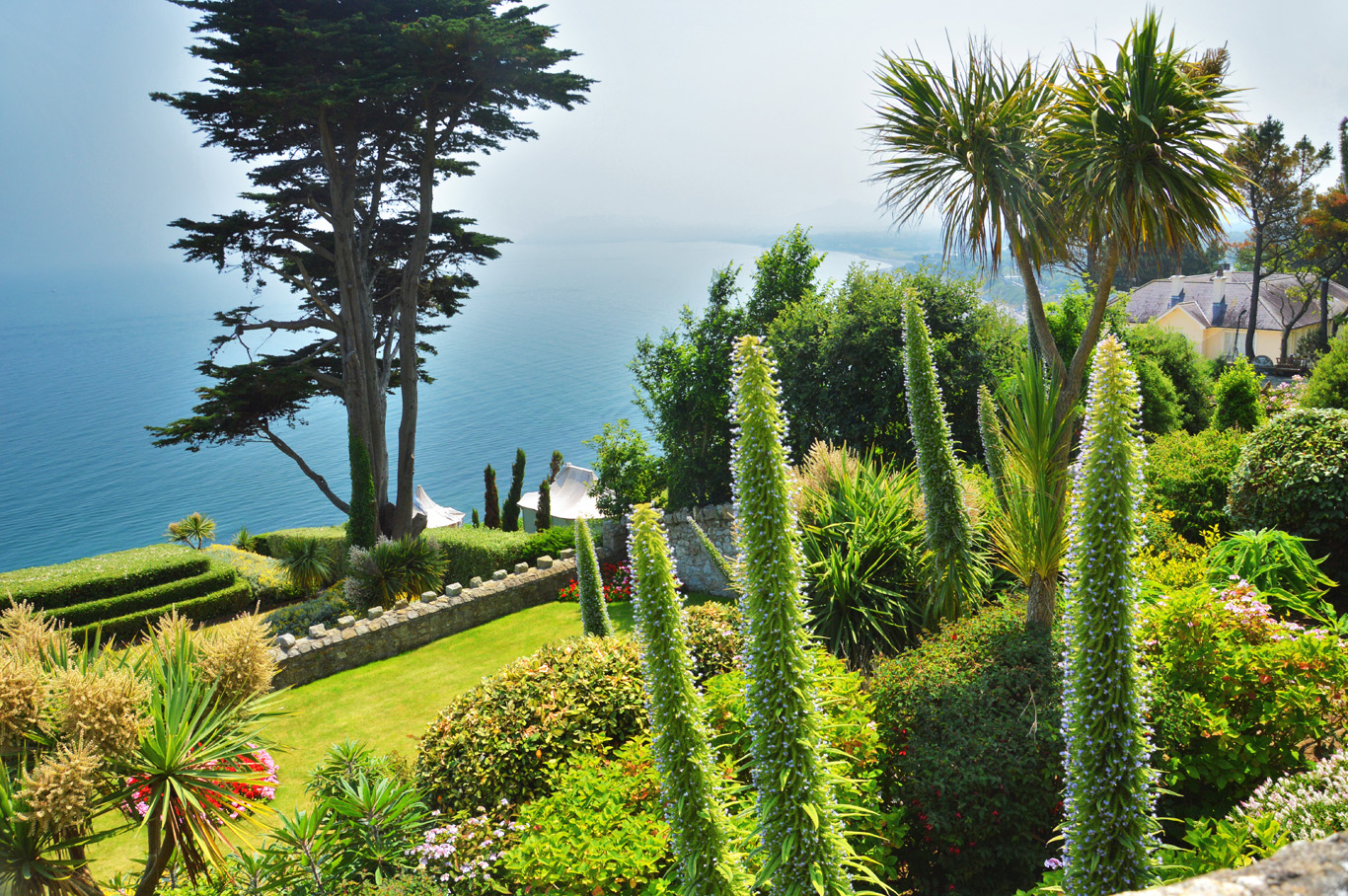 The coast in Killiney looks more Mediterranean than Irish