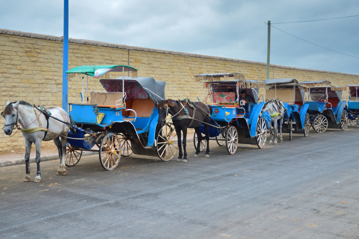 Horse taxis
