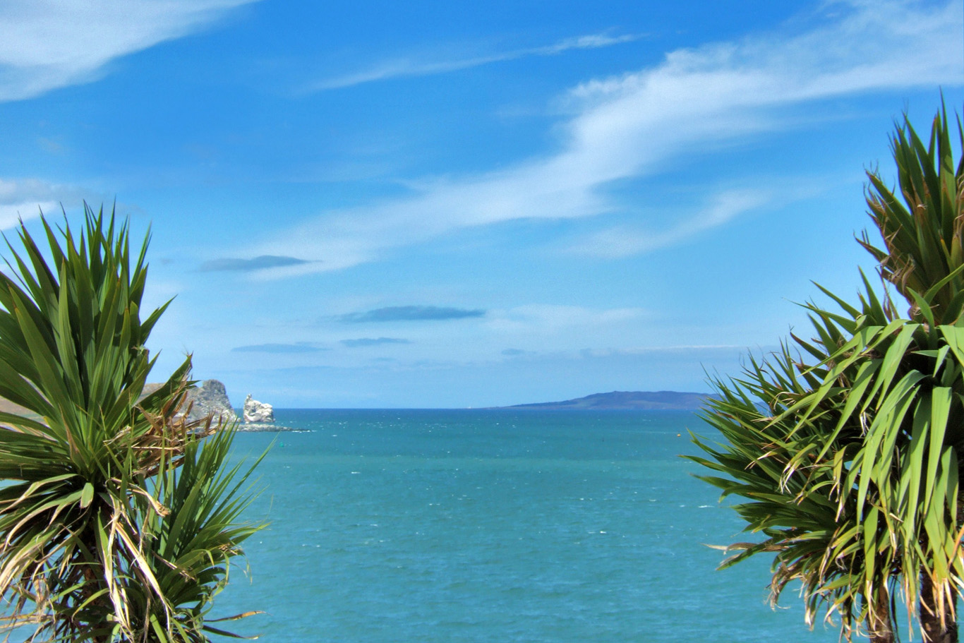 Exotic view in Howth