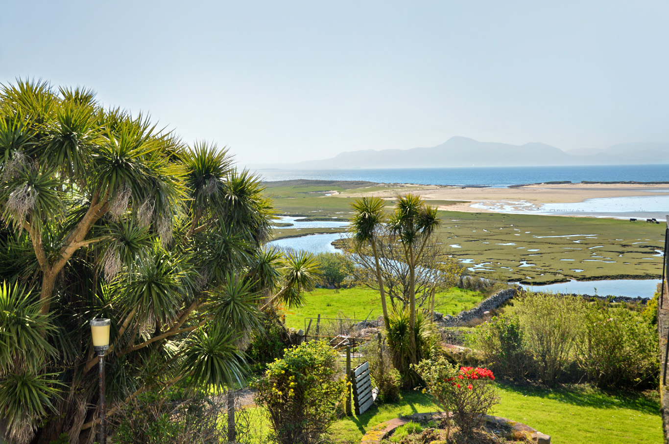 The 'tropical' side of Ireland