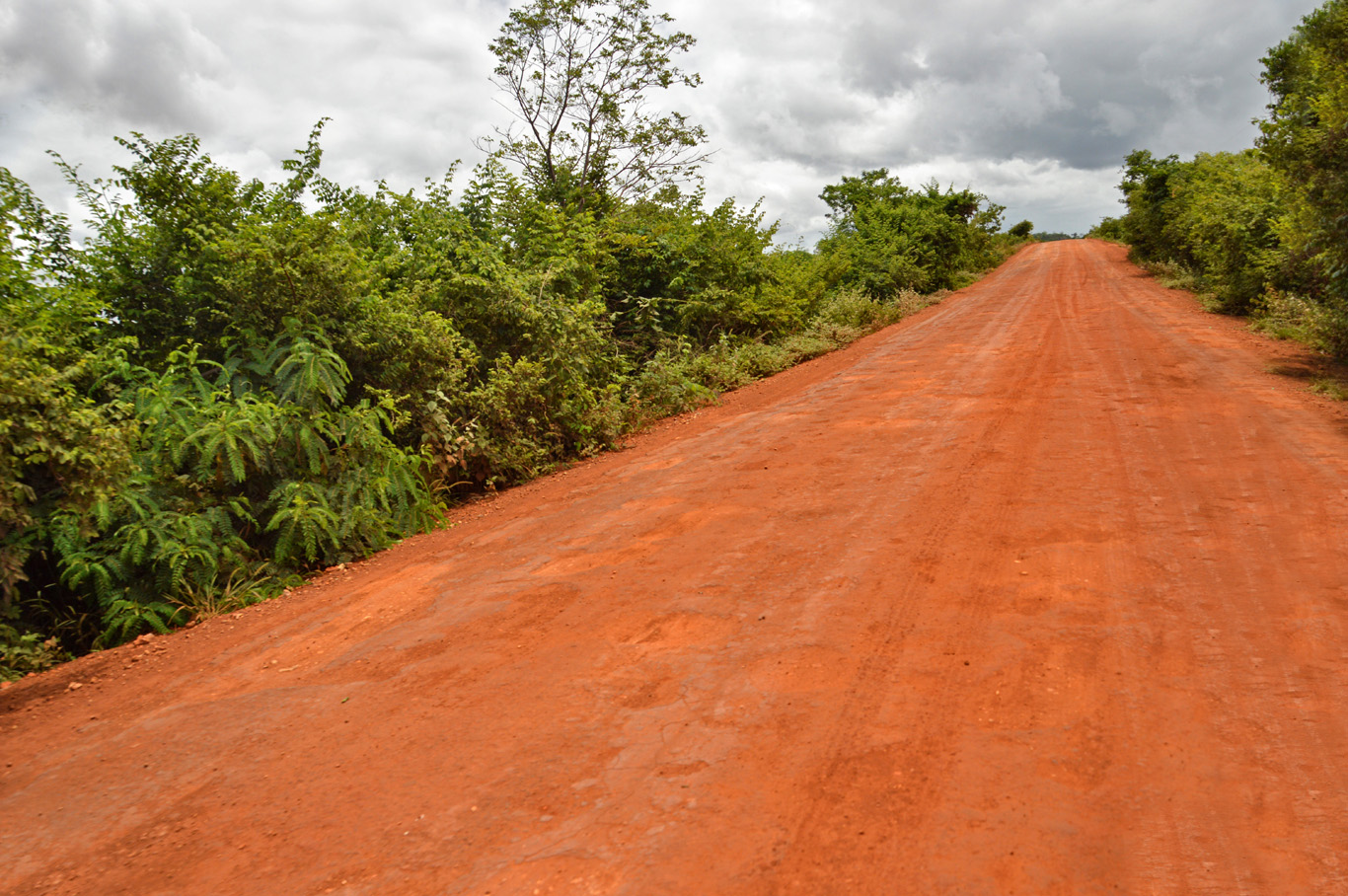Red road leading to Lençóis