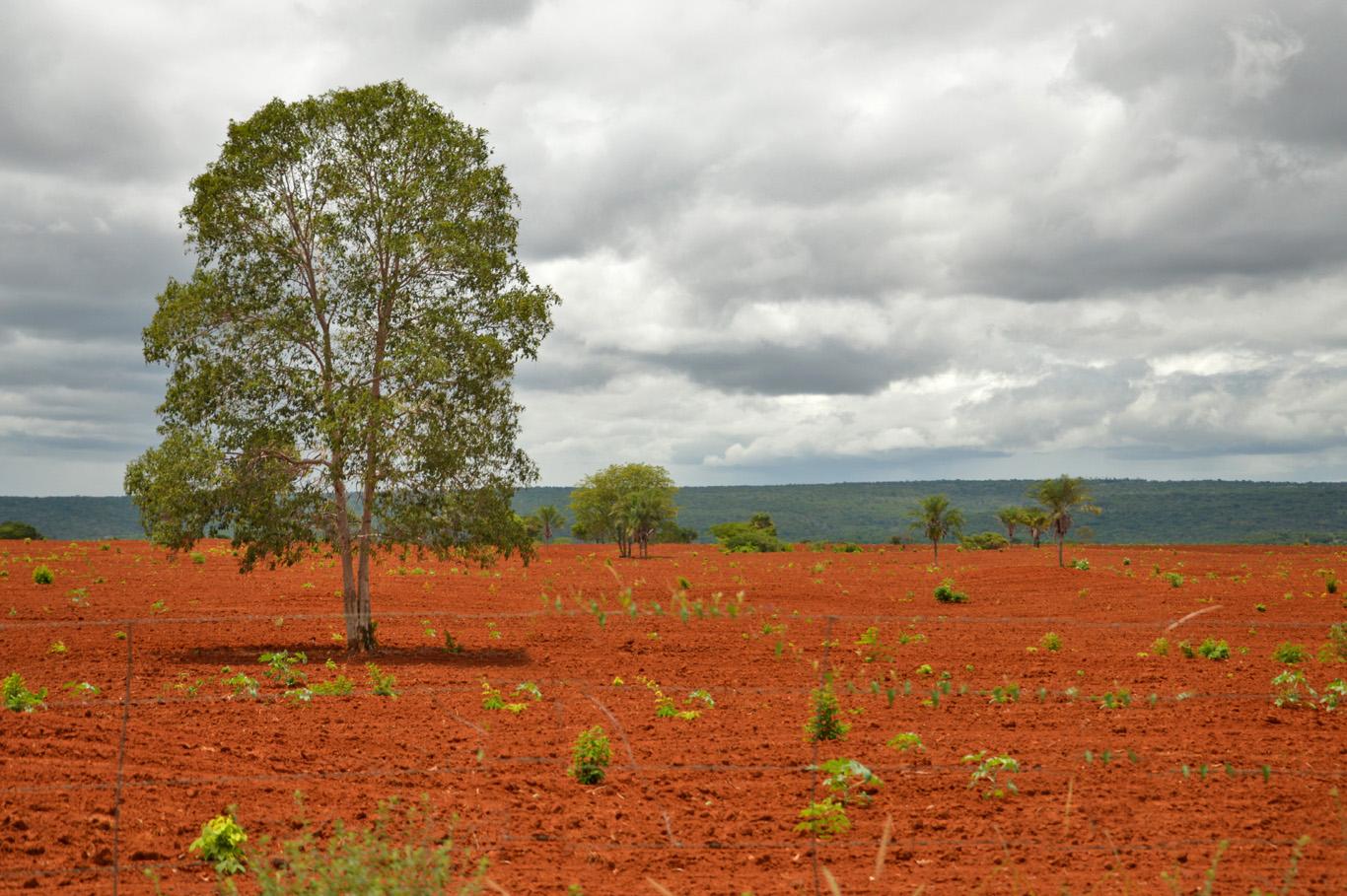 Red soil around Lençóis