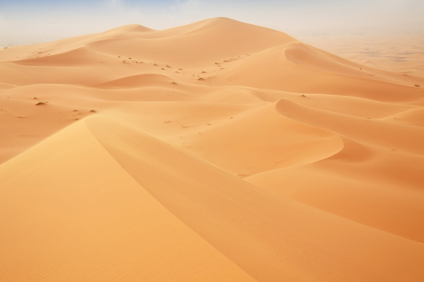 Golden dunes 'smoothed' by the wind