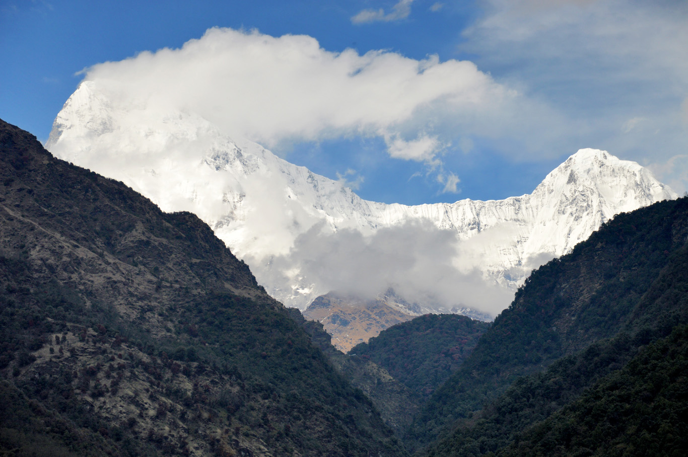 Himalayas - the view from the guest house