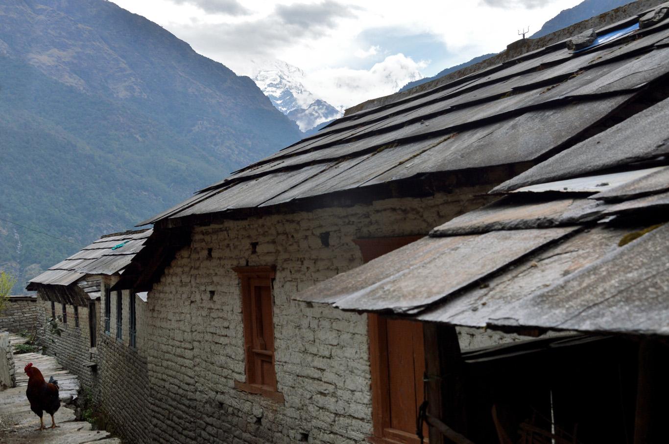 Houses in Ulleri