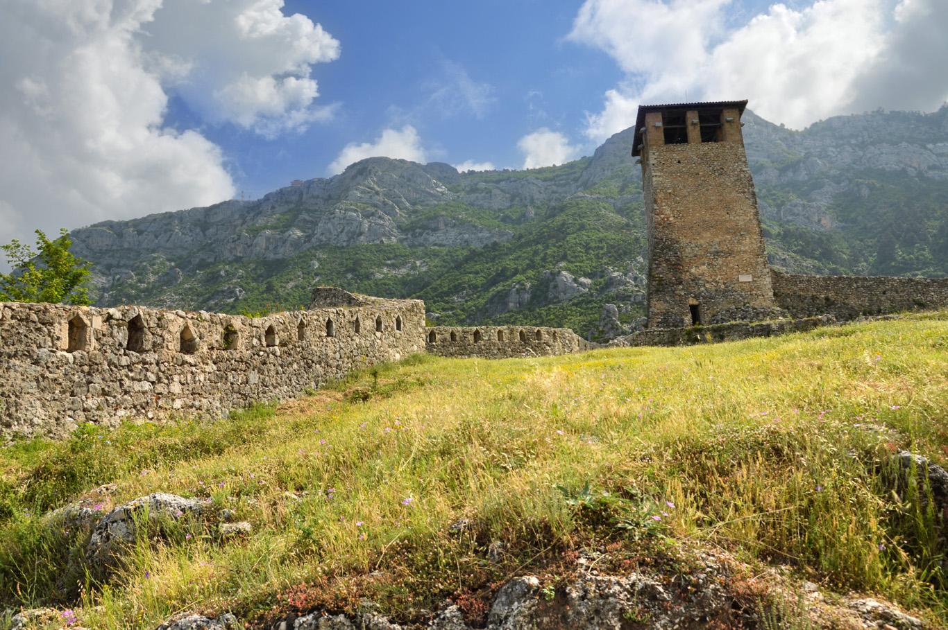 Medieval Tower and the defensive wall