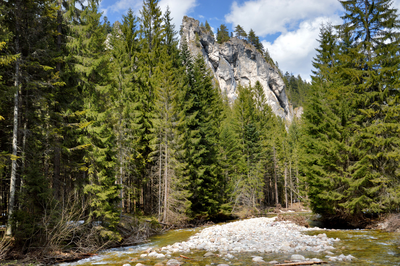 Along the trail to Chocholowska Valley