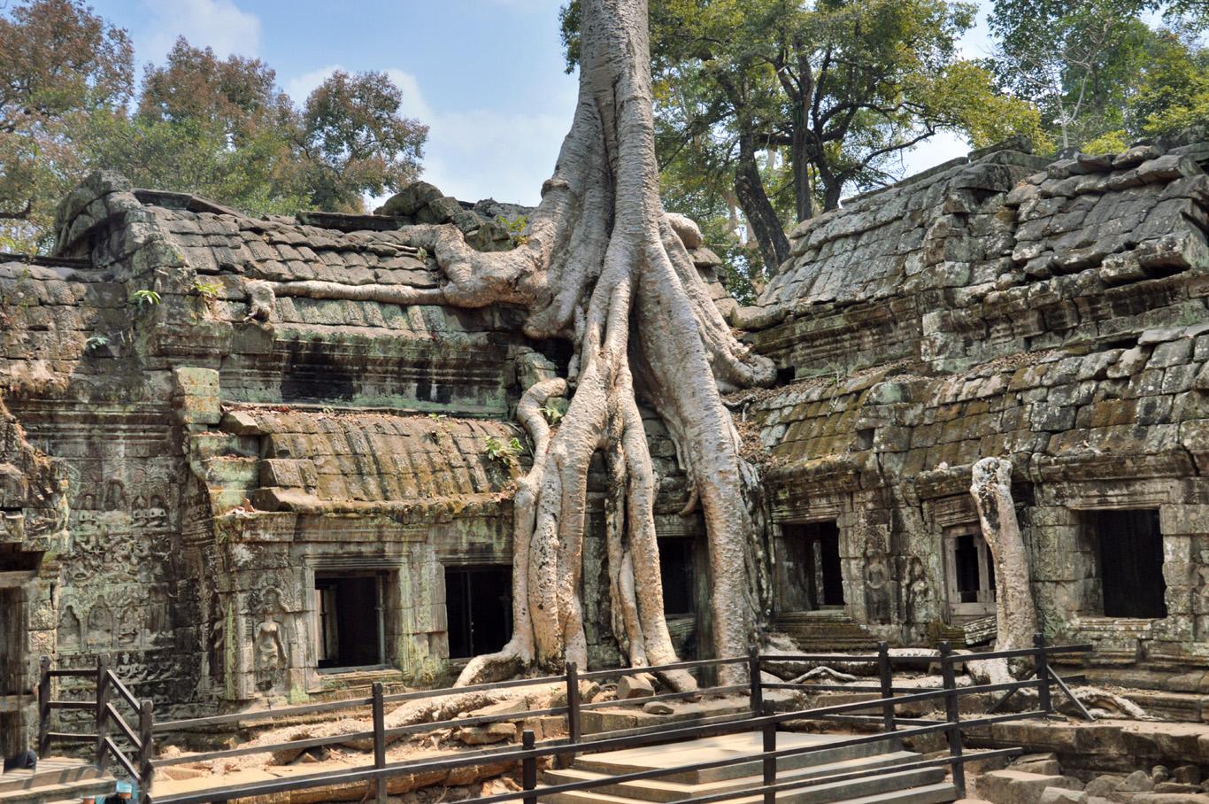 Ta Phrom Temple