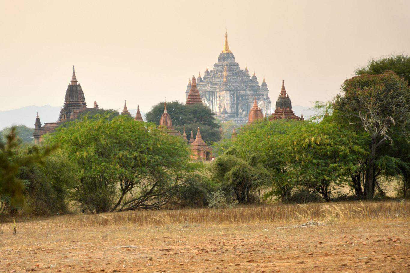 Temples in Bagan - Thatbyinnyu Temple in the background
