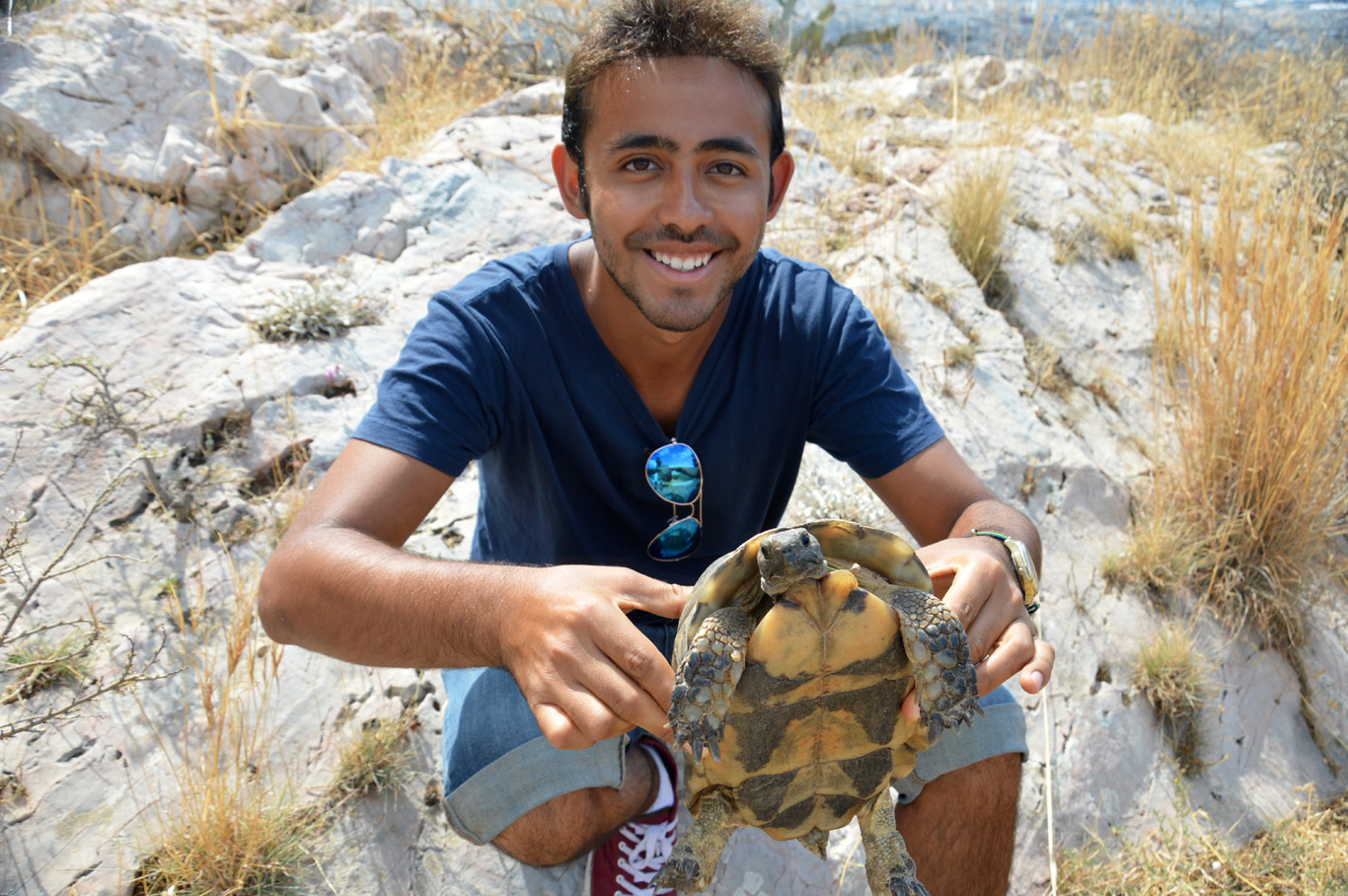 With the tortoise